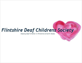 Flintshire Deaf Children's Society – Snowdonia Trip